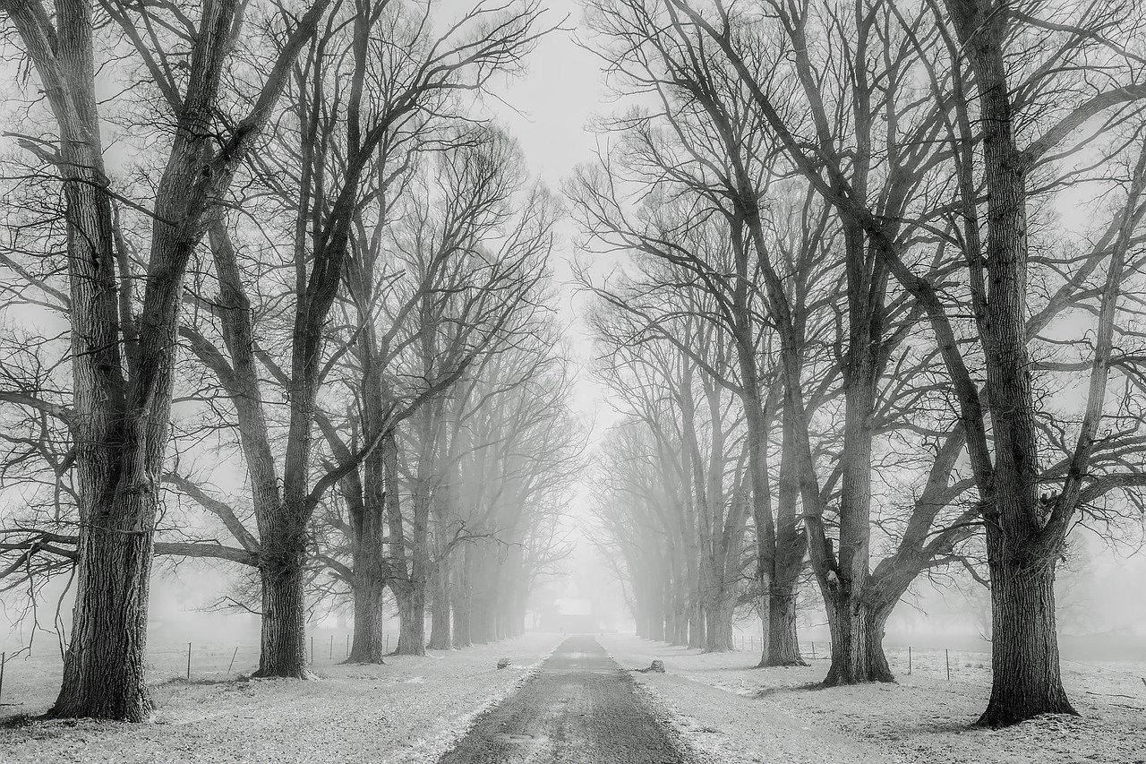Vertragingen door winters weer